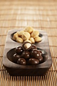 Macadamianüsse, geröstet und mit Schokoladenglasur