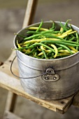 Green and Wax Beans in a Metal Pail