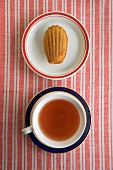 A Single Madeleine on a Plate with a Cup of Tea, From Above