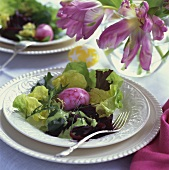 Easter Salad with Dyed Egg