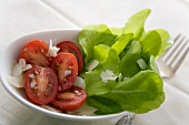 Tomato Salad with Fresh Greens and Shaved Parmesan Cheese