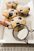 Blueberry Muffins on a Platter with Powdered Sugar in a Sifter