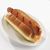 Grilled Hot Dog on a Plate; White Background