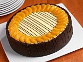 Orange Cheesecake with Chocolate Graham Cracker Crust