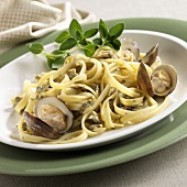 Pasta with White Wine Clam Sauce and Whole Clams on a Plate