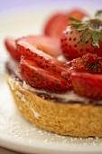 Strawberry Fruit Tart; Close Up