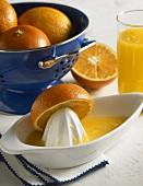 Oranges in Colander, Orange Half on Juicer, Glass of Orange Juice