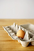 A Single Brown Egg in a Cardboard Egg Carton