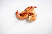 Three Shrimp on a White Background