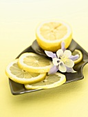 Lemon, Halved and Sliced with Blossom