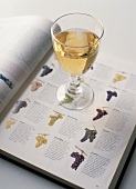 Glass of White Wine on an Opened Book About the Types of Grapes