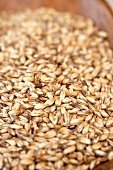 Crystal Barley Beer Malt