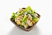 Grilled Chicken Caesar Salad in a Square Bowl on a White Background