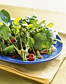 Green Salad with Roasted Red Peppers