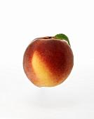 A Peach with Leaf