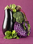 Veggie Still Life with Eggplant, Beet, Cabbage, Broccoli, Baby Greens and Brussels Sprout
