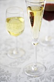 Three Glasses of Assorted Wine, Champagne, Red and White