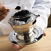 Chef Scooping Black Caviar with a Pearl Spoon