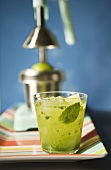Mojito in a Glass; Juicer