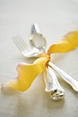 Fork, Spoon and Knife Ties with Ribbon