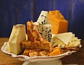 Cheese Still Life on Dish