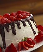 White Frosted Cake with Chocolate Icing and Strawberries