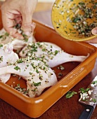 Seasoning Chicken with Garlic and Herbs