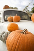 Various Pumpkins on a White Car