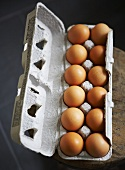 Dozen of Brown Eggs in Cardboard Carton