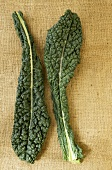 Two Kale Leaves