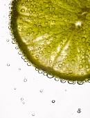 Zitronenscheibe in sprudelndem Wasser