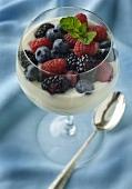 Vanilla Yogurt Topped with Mixed Berries