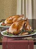 Zwei Truthähne auf Platten zu Thanksgiving