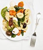 Tri Colored Tortellini with Olives and Mozzarella Cheese