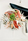 Cold Seafood Plate with Lobster, Shrimp, Clams and Oysters