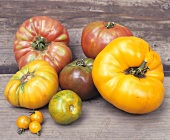 Verschiedene Heirloom Tomaten auf Holzuntergrund