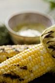 Roasted Corn on the Cob; Close Up