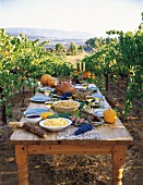 Thanksgiving Dinner Set on Rustic Table in Vineyard