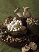 Various Mushrooms in Wooden Bowls