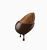 Almond Dipped in Chocolate; White Background