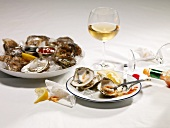 Serving Plate with Oyster Remains; Oysters on Ice; White Wine