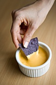 Hand Dipping Blue Corn Chip in Queso Dip