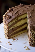 Yellow Layer Cake with Chocolate Frosting and Nuts