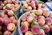 Organic Yellow Peaches at Union Square Market, NYC