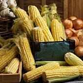 Sweet Corn Cobs,Onions and Garlic