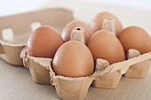 Half Dozen of Cage Free Eggs in Carton