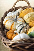 Basket of Fall Gourds and Pumpkins