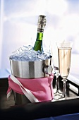 Champagne in Ice Bucket and Glass