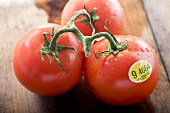 Three Organic Tomatoes on the Vine