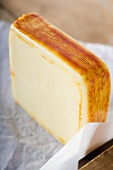 Muenster Cheese Standing on Paper